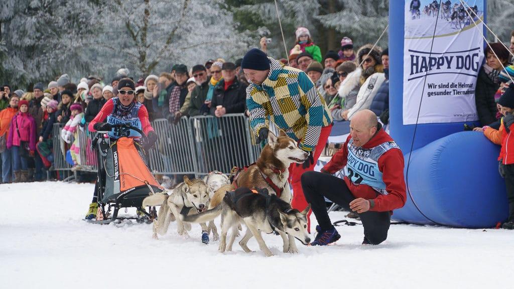 Schlittenhunde-Teams von Mariet Joosten. Vorn rechts ist Roderick Glastra