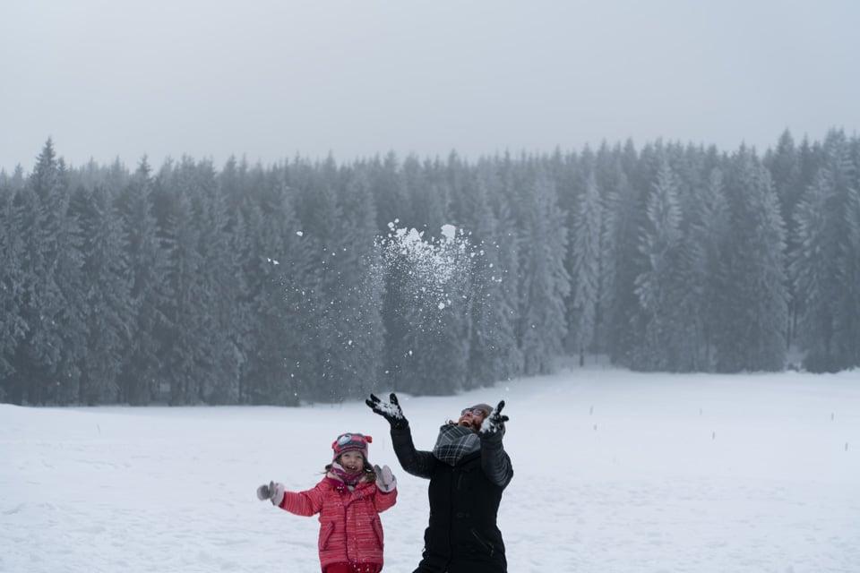 Schlittenhunderennen Frauenwald